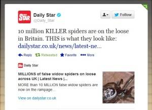 10 million KILLER spiders on the loose?