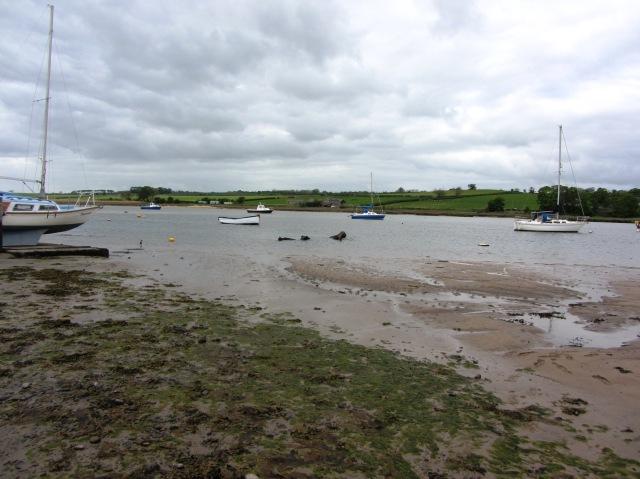 The river Aln monster?