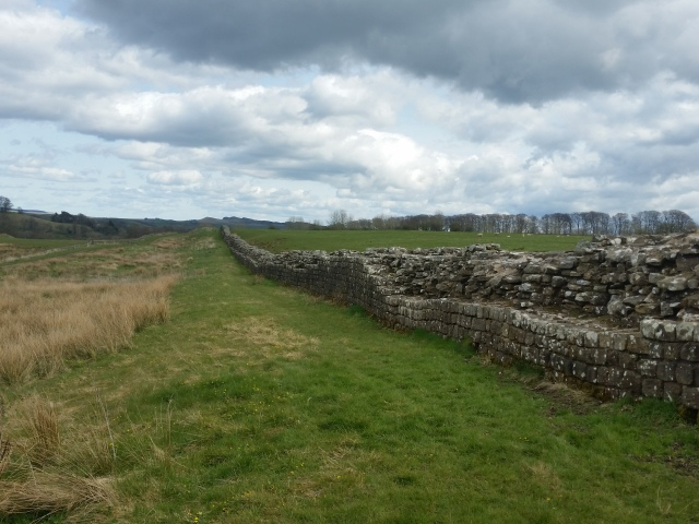 Hadrian's Wall.  Nesting birds to the left, not distinguishable in photo!